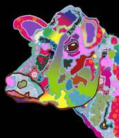 Colorful Daisy the Cow