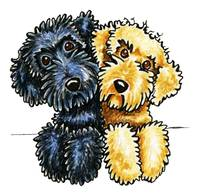 Labradoodles Black Yellow Lined Up