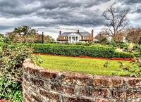 The Gardens at Boone Hall
