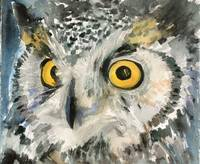 Great Horned Owl, watercolor painting
