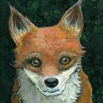 fox 350 Prints & Posters