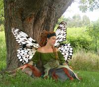Beautiful Faerie Girl