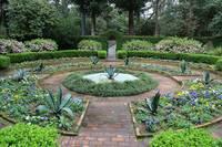 Southern Garden Courtyard by Carol Groenen