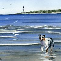 """Australian Shepherd at the Beach"" by k9artgallery"
