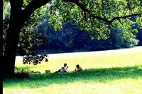 Pic - Picnic - JPG - in Bremen Germany
