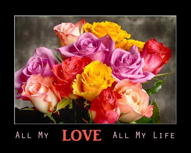 All My LOVE All My Life