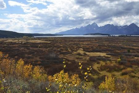Teton View Jackson Lake Lodge 6349