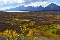 Teton View 2 Jackson Lake Lodge6350 by Tony Kerst