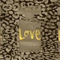 sepia tra love bottles by Ricki Mountain