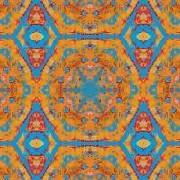 Pattern and Optics 281 by Ricki Mountain