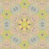 Pattern and Optics 286 by Ricki Mountain