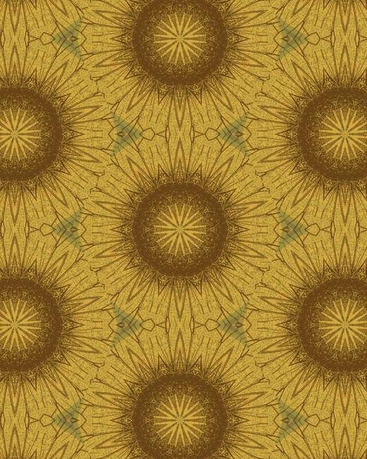 Pattern and Optics 293