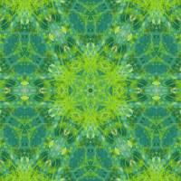 Pattern and Optics 300 by Ricki Mountain