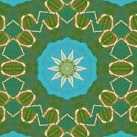 Pattern and Optics 305 by Ricki Mountain