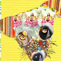 Pup Collage I by Ricki Mountain