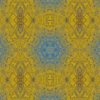 Pattern and Optics 276 by Ricki Mountain