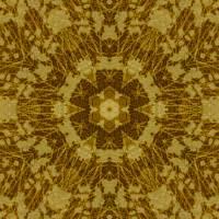 Pattern and Optics 309 by Ricki Mountain