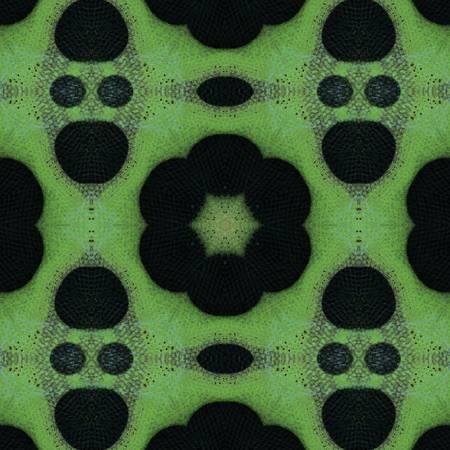 Pattern and Optics 158