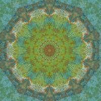Pattern and Optics 152 by Ricki Mountain