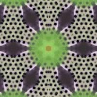 Pattern and Optics 171 by Ricki Mountain