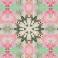 Pattern and Optics 177 by Ricki Mountain