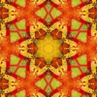 Pattern and Optics 163 by Ricki Mountain