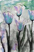 Blue Tulips Watercolor by Ginette