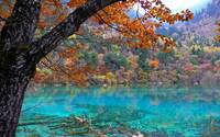 Colorful Autumn Mountain View By The Blue Lake