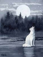 White Cat Moon