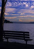 Mount Rainier view from Seward Park bench