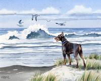 Doberman Pinscher at the Beach 2