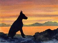 Doberman Pinscher Sunset