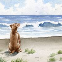 """Hungarian Vizsla at the Beach"" by k9artgallery"