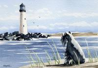 Miniature Schnauzer Lighthouse