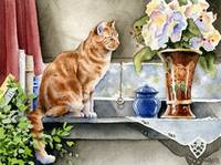 Orange Tabby Cat at Window