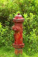 Rust Covered Fire Hydrant