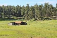 Old Homestead In The Black Hills