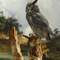Owl in Birch Tree by I.M. Spadecaller