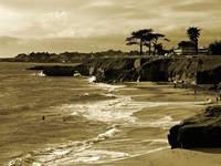 Golden Santa Cruz Beach by Carol Groenen
