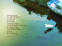 Serenity Prayer Water and White Bird