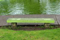 Concrete Bench in a Park