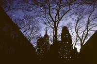 Night Lights NYC Empire State 002 D Hohmann Print