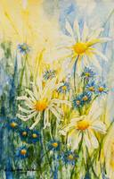 Sunlit Yellow White Daisy Blue Flowers watercolor