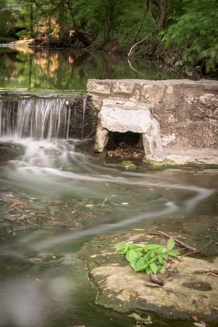 Waller Creek at UT (2)