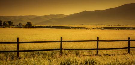 Yampa Valley Morning