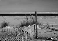 Snow Fence on Tybee Island