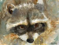 animal art | watercolor | Rosie the Raccoon