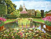 THE WATER LILY POND