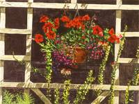 TRELLIS FLOWER POT
