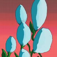 cveece by siniša (sine) berstovšek (sinonim)
